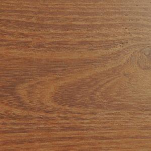 Acacia termotrattata chiara