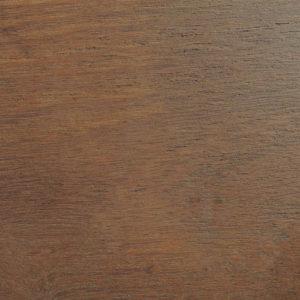 Acacia tinta